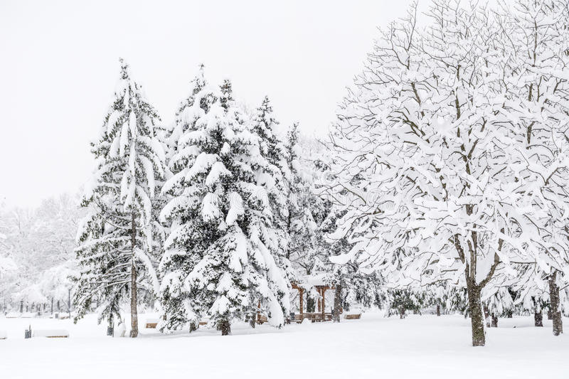 Όμορφο τοπίο χειμερινών πάρκων από τη Sofia, Βουλγαρία στοκ εικόνες
