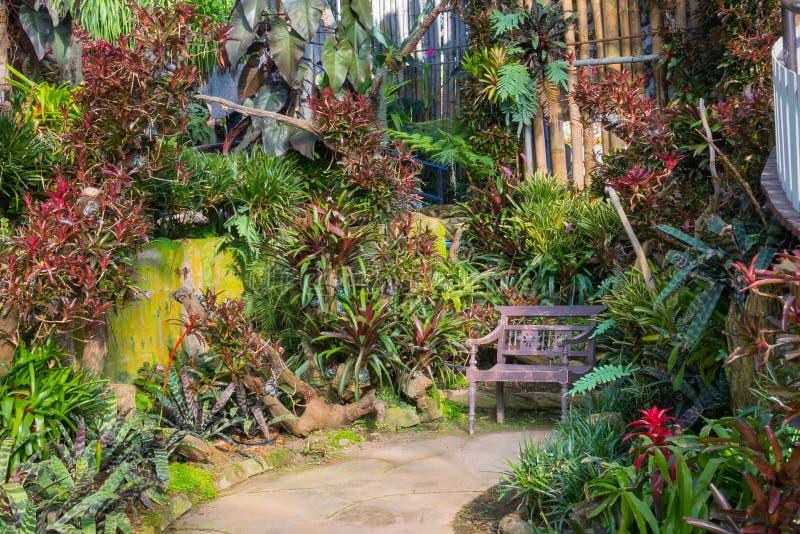 Όμορφο τροπικό ύφος της Ασίας με την πράσινη ιδέα κήπων κόκκινου χρώματος με την ξύλινη καρέκλα, το συγκεκριμένο πεζοδρόμιο και τ στοκ εικόνα με δικαίωμα ελεύθερης χρήσης