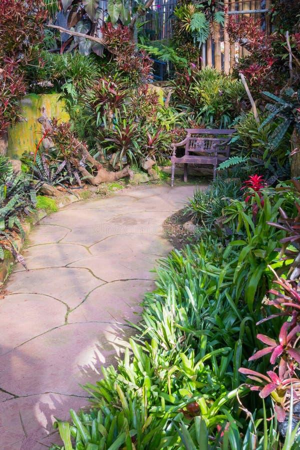 Όμορφο τροπικό ύφος της Ασίας με την πράσινη ιδέα κήπων κόκκινου χρώματος με την ξύλινη καρέκλα, το συγκεκριμένο πεζοδρόμιο και τ στοκ φωτογραφία