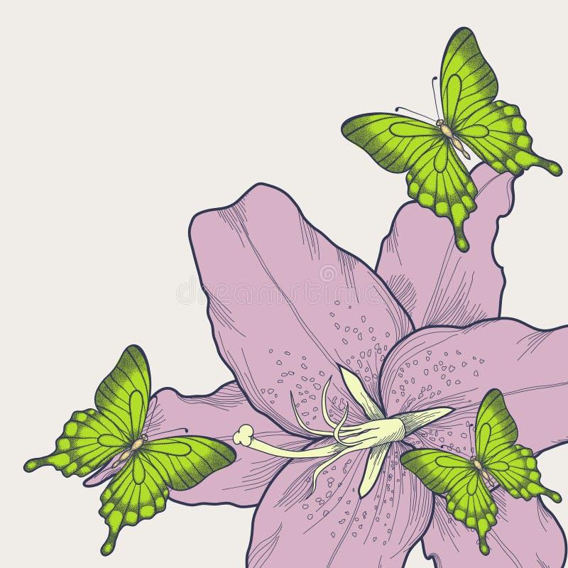 Όμορφο υπόβαθρο για την κάρτα με τις πεταλούδες, κρίνος.  σε ένα hand-drawn γραφικό ύφος στα εκλεκτής ποιότητας χρώματα απεικόνιση αποθεμάτων