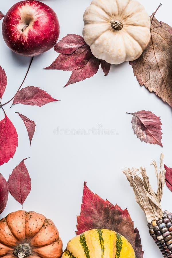 Όμορφο υπόβαθρο φθινοπώρου με τη διάφορα ζωηρόχρωμα κολοκύθα, τα μήλα και τα φύλλα πτώσης στο άσπρο επιτραπέζιο υπόβαθρο, τοπ άπο στοκ εικόνες