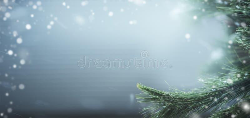Όμορφο υπόβαθρο χειμερινών εμβλημάτων με τους κλάδους και το χιόνι πεύκων Χειμερινές διακοπές και Χριστούγεννα στοκ εικόνες