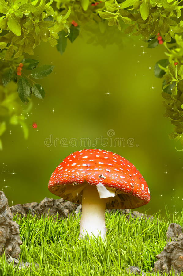όμορφο φανταστικό δάσος μ&alp στοκ φωτογραφίες με δικαίωμα ελεύθερης χρήσης