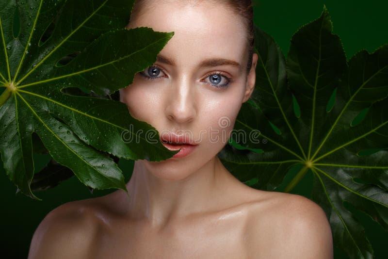 Όμορφο φρέσκο κορίτσι με το τέλειο δέρμα, τη φυσική σύνθεση και τα πράσινα φύλλα Πρόσωπο ομορφιάς στοκ φωτογραφίες με δικαίωμα ελεύθερης χρήσης