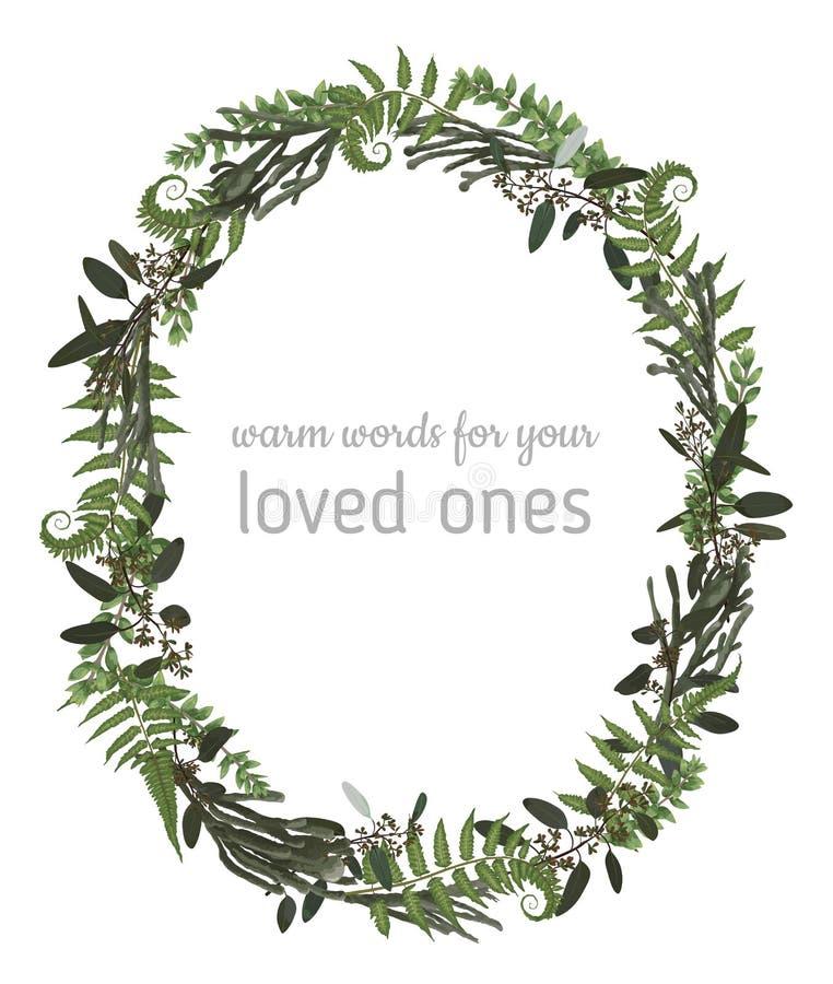 Όμορφο φυλλώδες στεφάνι πλαισίων των κλάδων ευκαλύπτων, brunia, φτερών και πυξαριού που απομονώνονται στο λευκό Για τις γαμήλιες  ελεύθερη απεικόνιση δικαιώματος