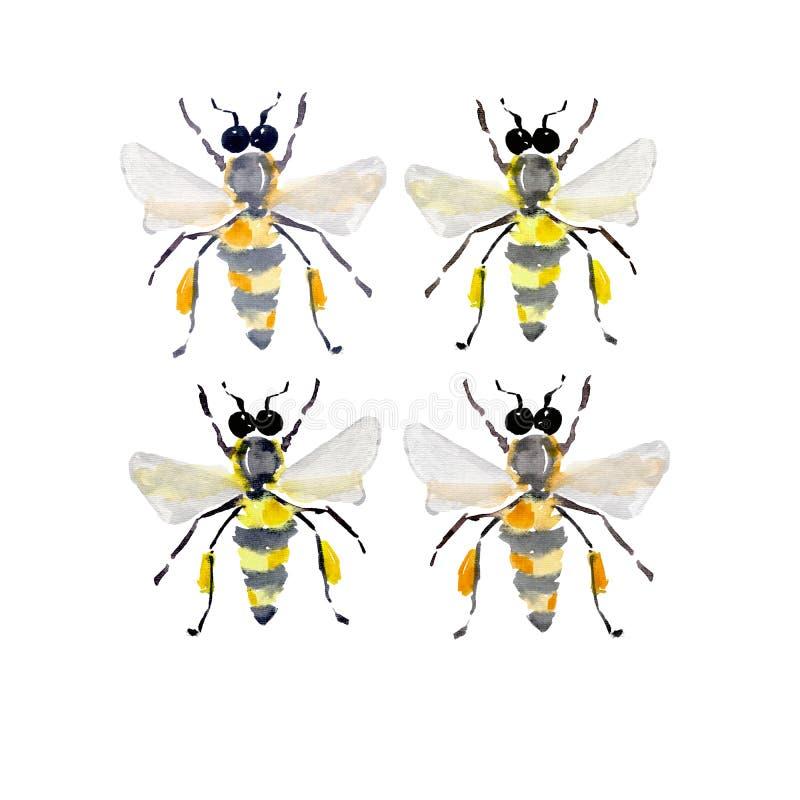 Όμορφο φωτεινό γραφικό αφηρημένο χαριτωμένο καλό μελισσών θερινού ζωηρόχρωμο watercolor τεσσάρων μελιού απεικόνιση αποθεμάτων