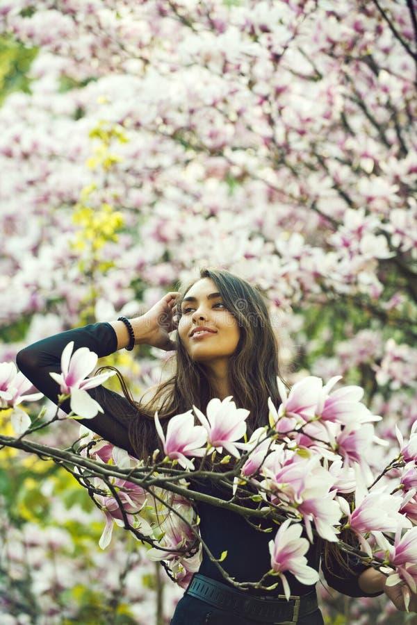 Όμορφο φύση, άνοιξη ή καλοκαίρι, magnolia στοκ φωτογραφία με δικαίωμα ελεύθερης χρήσης