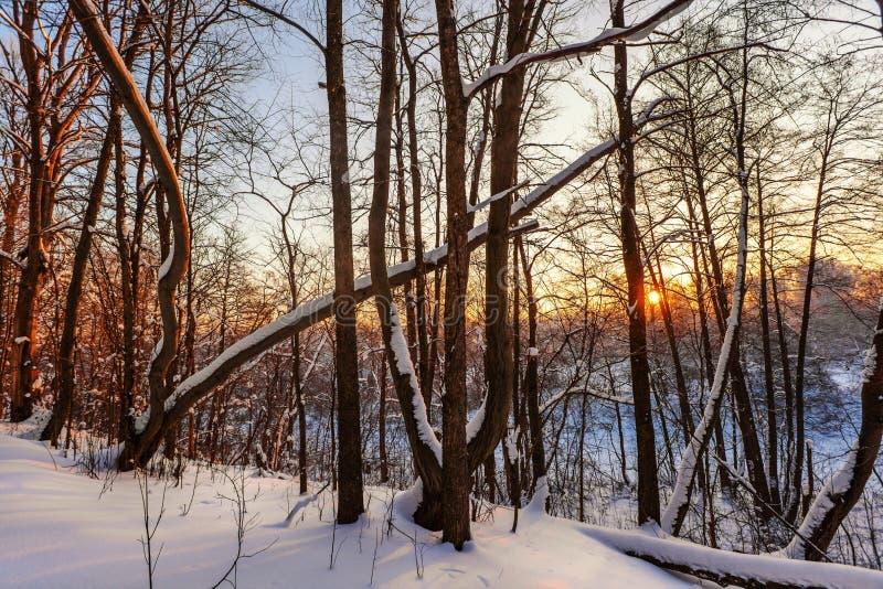 Όμορφο χειμερινό ηλιοβασίλεμα στοκ φωτογραφία