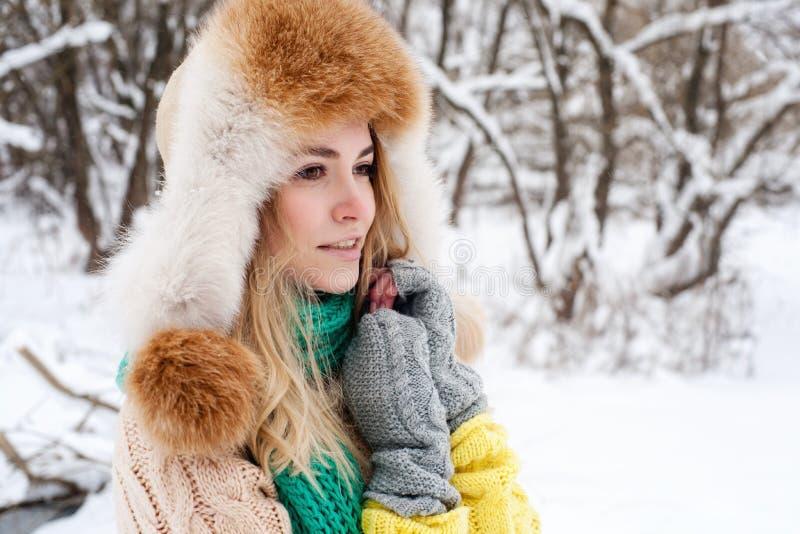 Όμορφο χειμερινό πορτρέτο της νέας γυναίκας στο χειμερινό χιονώδες τοπίο στοκ εικόνες