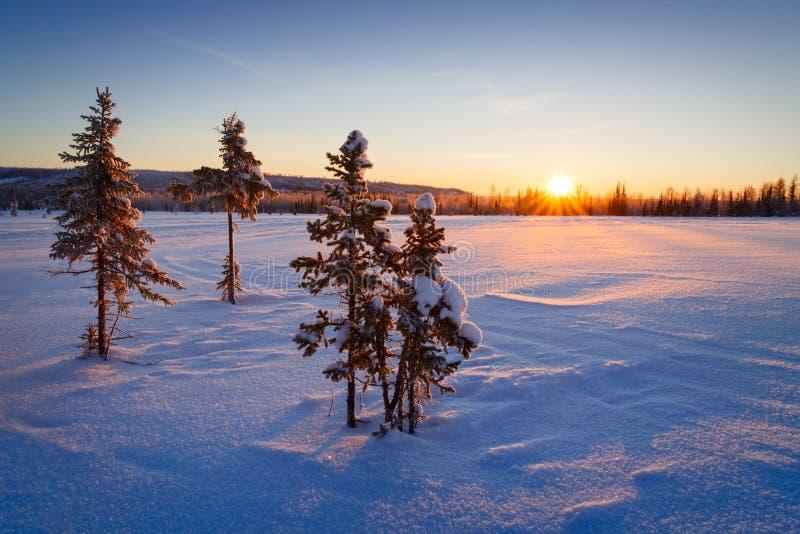 Όμορφο χειμερινό τοπίο στα βουνά Ανατολή στοκ εικόνες