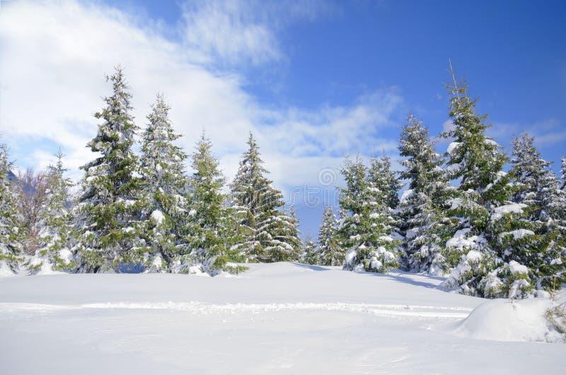 Όμορφο χειμερινό mountainside τοπίο στοκ εικόνες