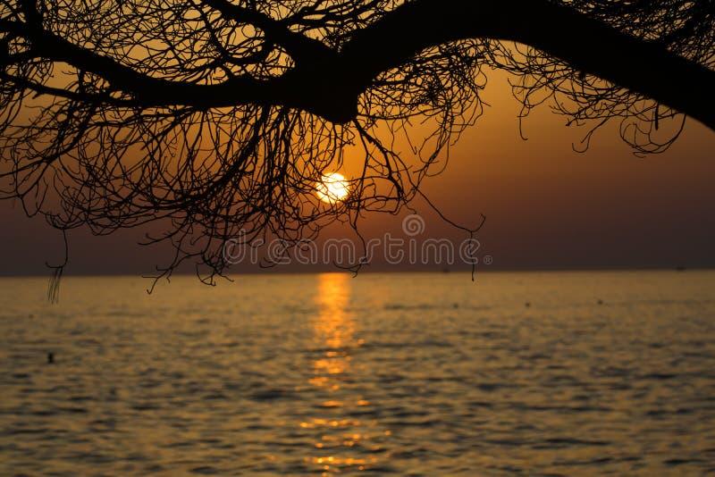 Όμορφο ωκεάνιο ηλιοβασίλεμα με τη σκιαγραφία στοκ φωτογραφίες με δικαίωμα ελεύθερης χρήσης