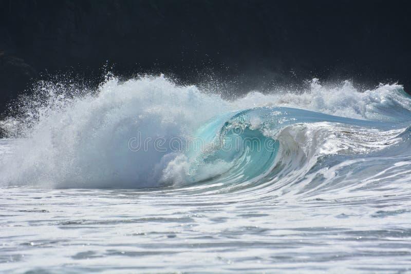 Όμορφο ωκεάνιο κύμα στοκ φωτογραφίες με δικαίωμα ελεύθερης χρήσης