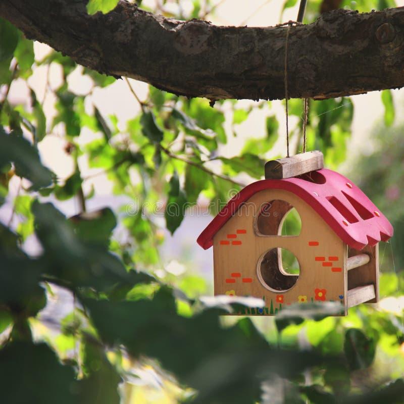 Όμορφο birdhouse σε ένα δέντρο στοκ φωτογραφίες με δικαίωμα ελεύθερης χρήσης