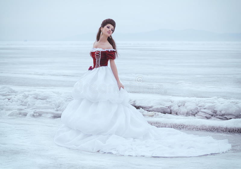 Όμορφο brunette σε ένα φόρεμα στοκ φωτογραφίες