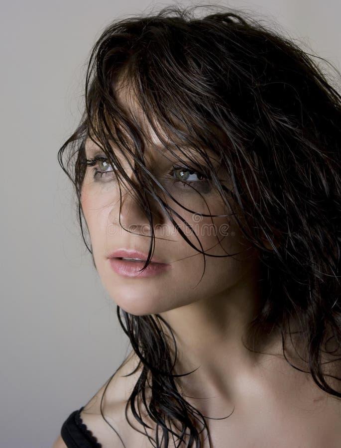 όμορφο brunette υγρό στοκ φωτογραφία με δικαίωμα ελεύθερης χρήσης