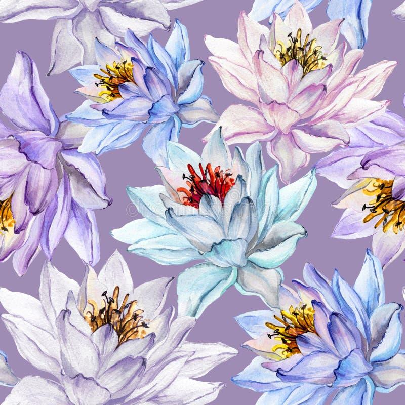 όμορφο floral πρότυπο άνευ ραφής Μεγάλα ζωηρόχρωμα λουλούδια λωτού στο ιώδες υπόβαθρο συρμένος εικονογράφος απεικόνισης χεριών ξυ διανυσματική απεικόνιση