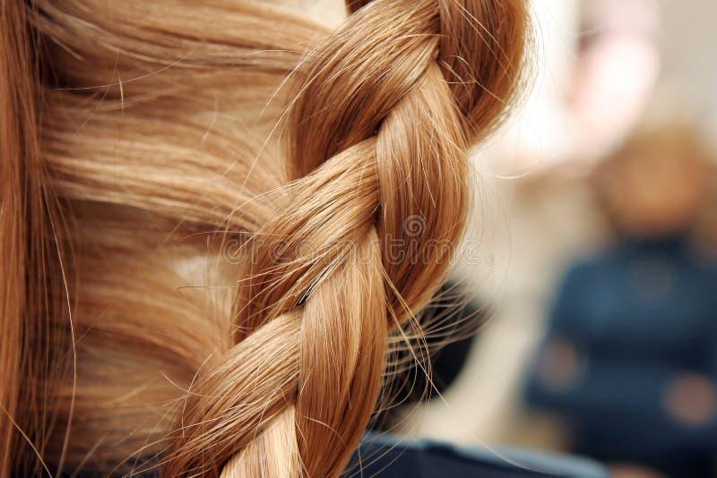 όμορφο hairdo στοκ φωτογραφία