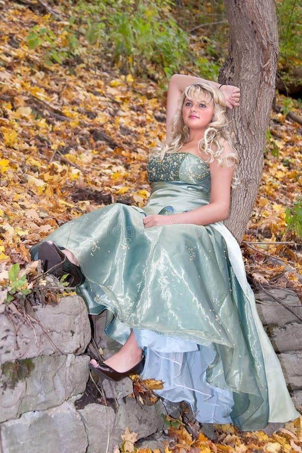 Download όμορφο prom κοριτσιών στοκ εικόνες. εικόνα από βράδυ - 13176200