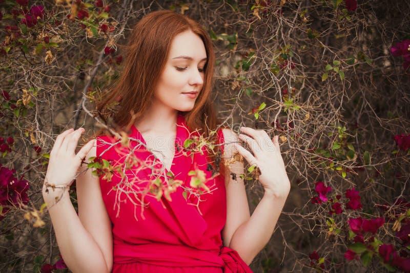 Όμορφο redhead κορίτσι στο κόκκινο φόρεμα στο Μπους στοκ φωτογραφία με δικαίωμα ελεύθερης χρήσης