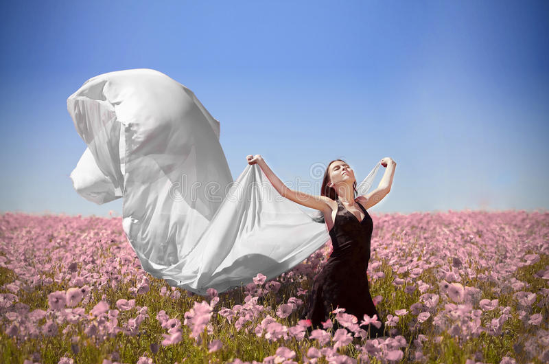 όνειρα στοκ φωτογραφία με δικαίωμα ελεύθερης χρήσης