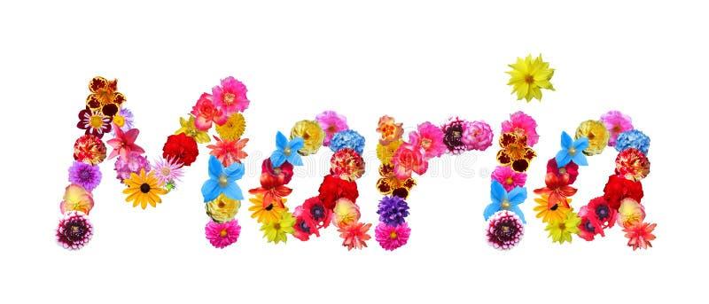 Όνομα Μαρία λουλουδιών διανυσματική απεικόνιση