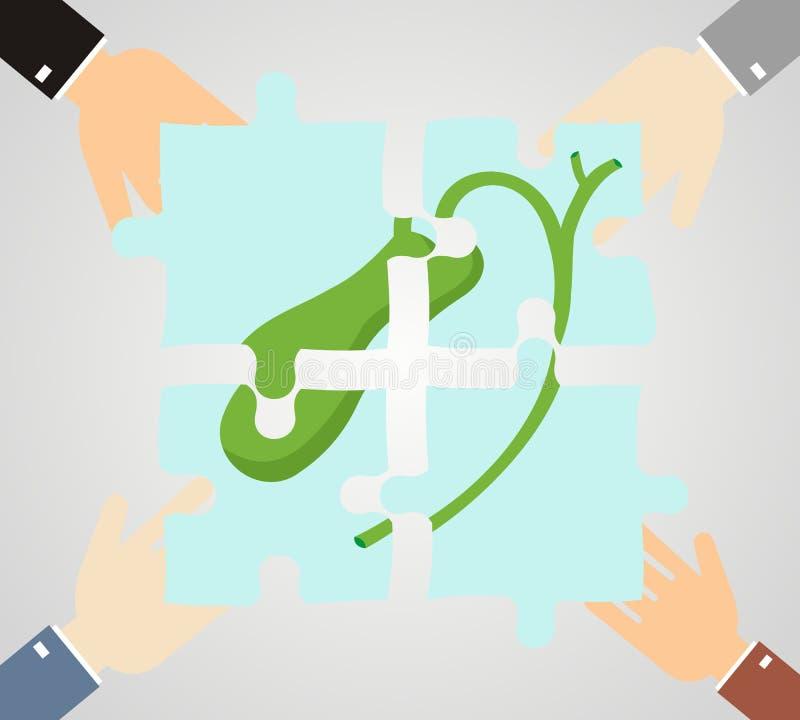 όντας χέρι έννοιας έχει το πρόσφατο χάπι οδηγιών υγειονομικής περίθαλψης Τα χέρια κρατούν το γρίφο κομματιών της χοληδόχου κύστης διανυσματική απεικόνιση