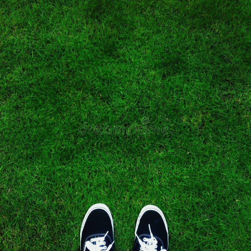 Όπου στέκομαι: πράσινος τομέας στοκ φωτογραφία με δικαίωμα ελεύθερης χρήσης