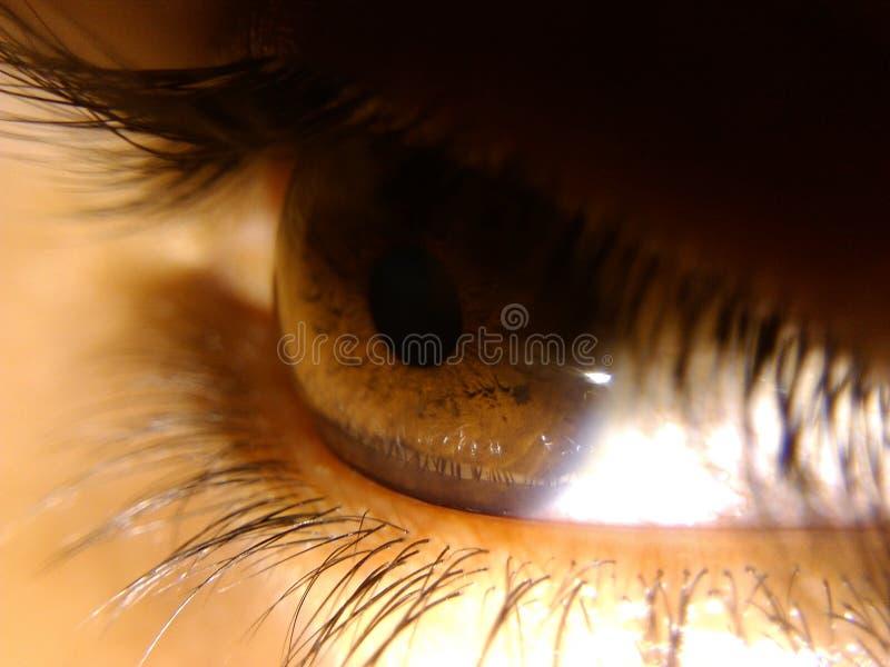 Όραμα ματιών στοκ φωτογραφίες με δικαίωμα ελεύθερης χρήσης