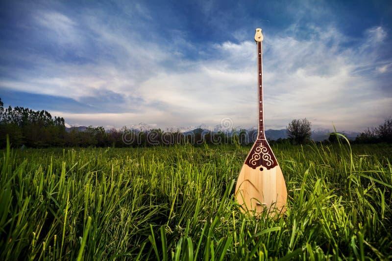 Όργανο του Καζάκου Dombra στοκ εικόνα με δικαίωμα ελεύθερης χρήσης