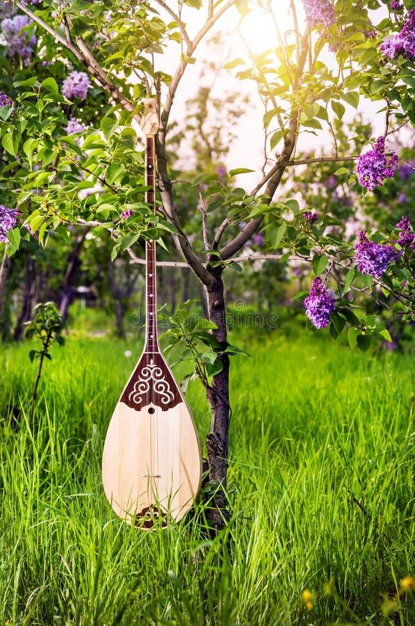 Όργανο του Καζάκου Dombra στοκ εικόνες