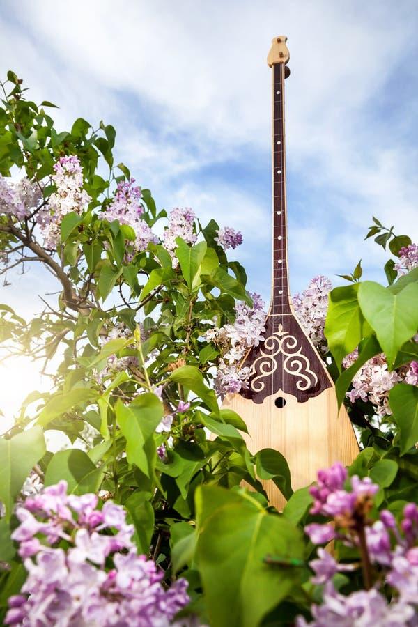 Όργανο του Καζάκου Dombra στοκ εικόνες με δικαίωμα ελεύθερης χρήσης