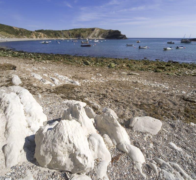 όρμος Dorset ακτών lulworth στοκ εικόνα με δικαίωμα ελεύθερης χρήσης