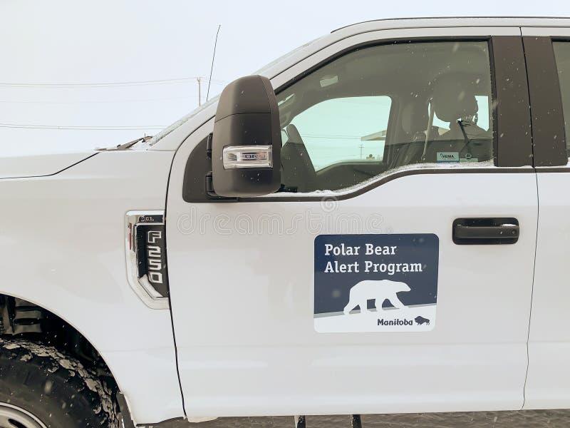 Όχημα προειδοποίησης πολικής αρκούδας στοκ εικόνα με δικαίωμα ελεύθερης χρήσης