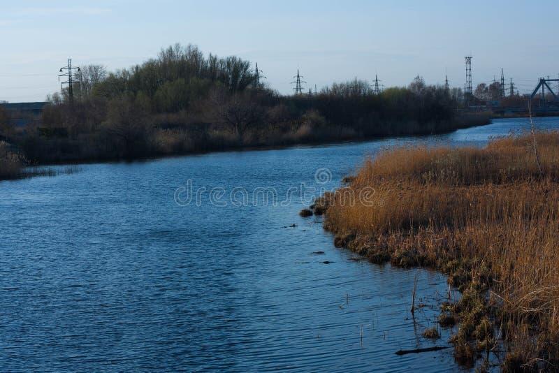 Όχθη ποταμού, κυματισμοί στο νερό, υψηλή χλόη στοκ εικόνα με δικαίωμα ελεύθερης χρήσης