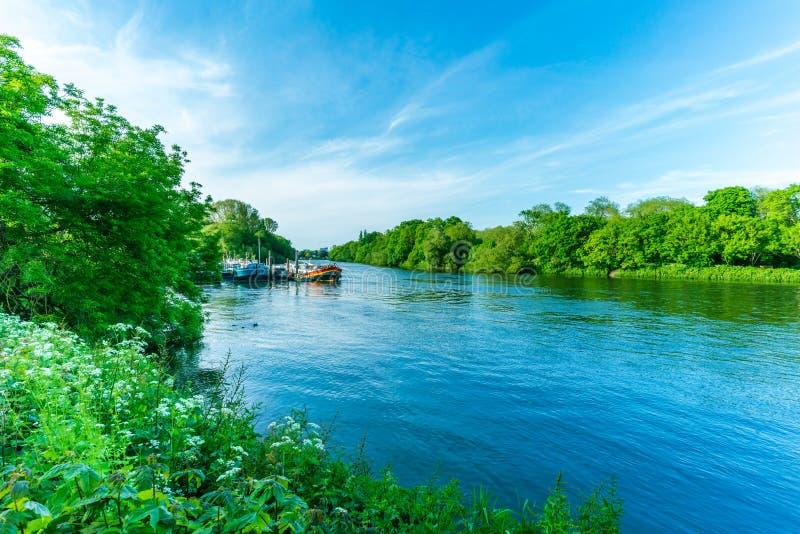 Όχθη ποταμού του Τάμεση κοντά στο Ρίτσμοντ, Λονδίνο, Αγγλία στοκ εικόνες
