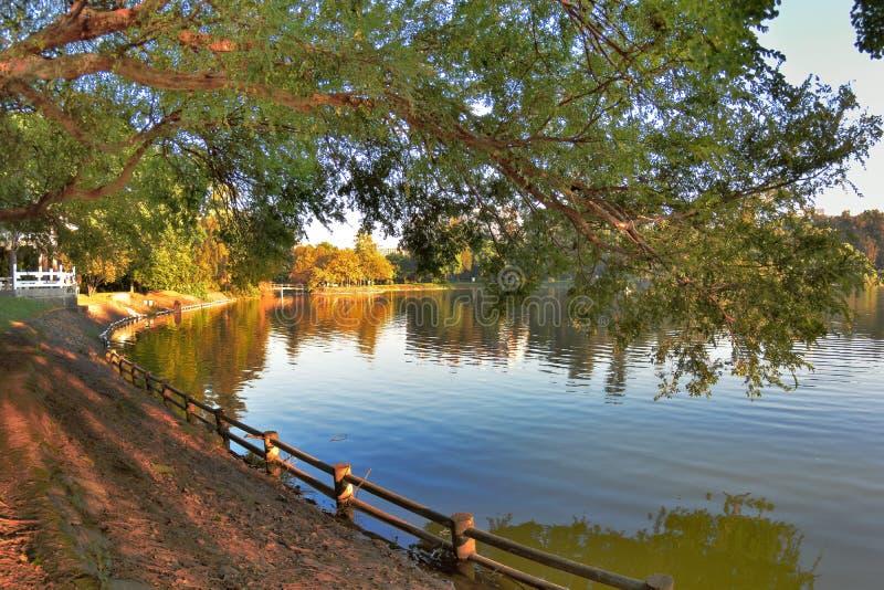 Όχθη της λίμνης στην πανεπιστημιακή πόλη στοκ φωτογραφία με δικαίωμα ελεύθερης χρήσης