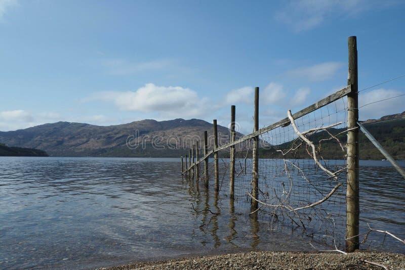 Όψη λιμνών στοκ φωτογραφία