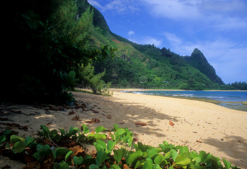 Download όψη σηράγγων παραλιών στοκ εικόνες. εικόνα από honeymoon - 13176880