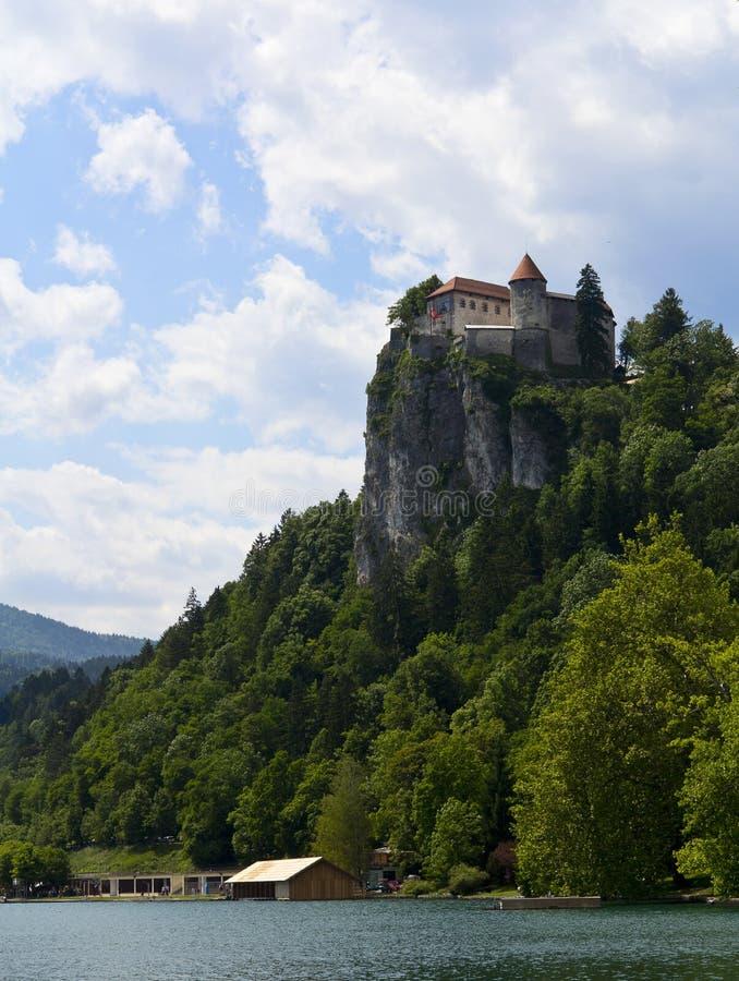 Όψη σχετικά με το αιμορραγημένο κάστρο, Σλοβενία στοκ φωτογραφίες με δικαίωμα ελεύθερης χρήσης