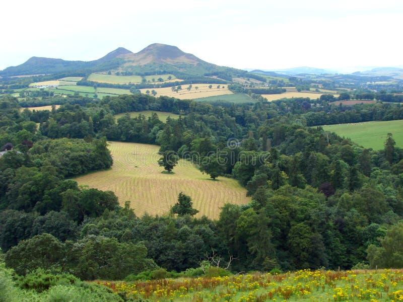 όψη του s Σκωτία scott στοκ εικόνα