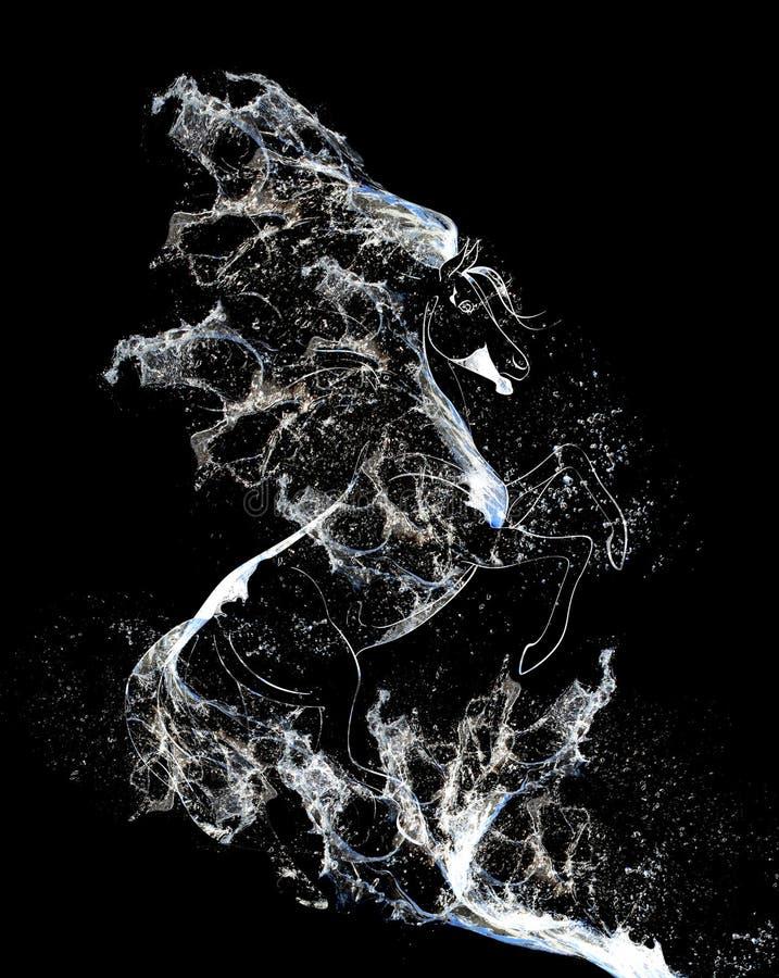 ύδωρ αλόγων στοκ εικόνα