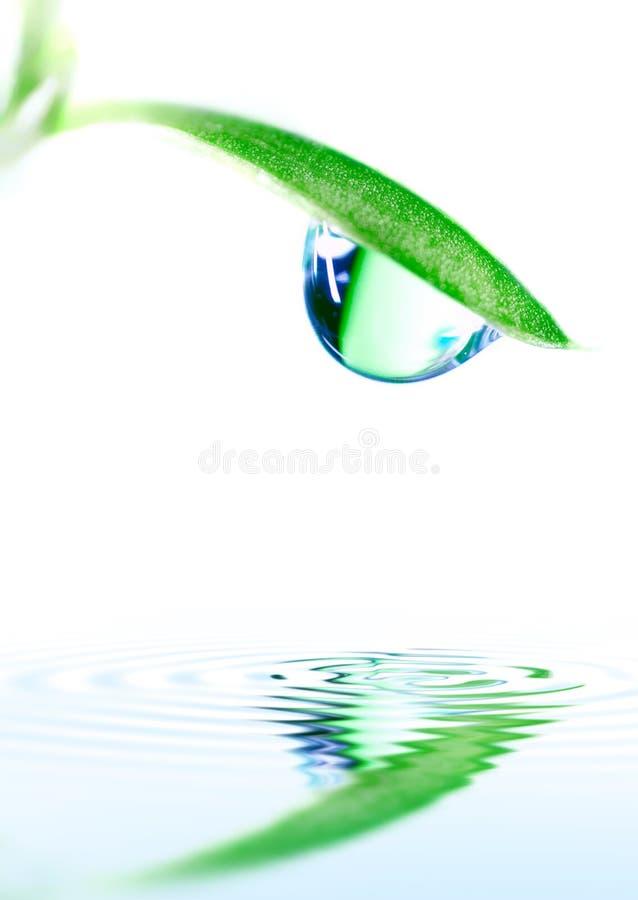 ύδωρ απελευθέρωσης στοκ εικόνες