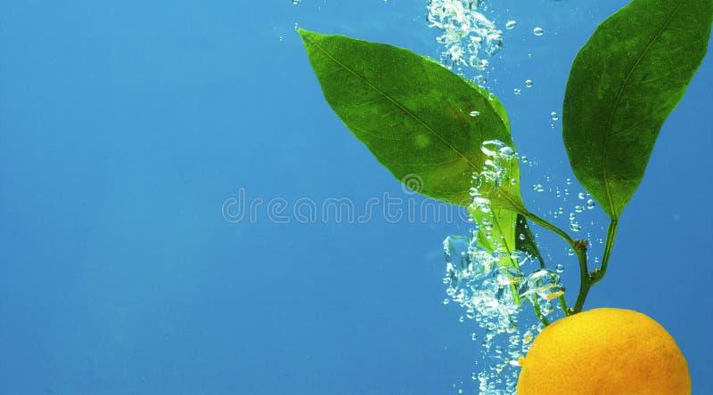 ύδωρ καρπού στοκ εικόνα με δικαίωμα ελεύθερης χρήσης
