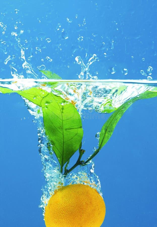 ύδωρ καρπού στοκ εικόνες
