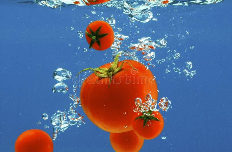 ύδωρ λαχανικών στοκ εικόνες