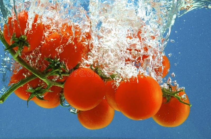 ύδωρ λαχανικών στοκ φωτογραφίες με δικαίωμα ελεύθερης χρήσης