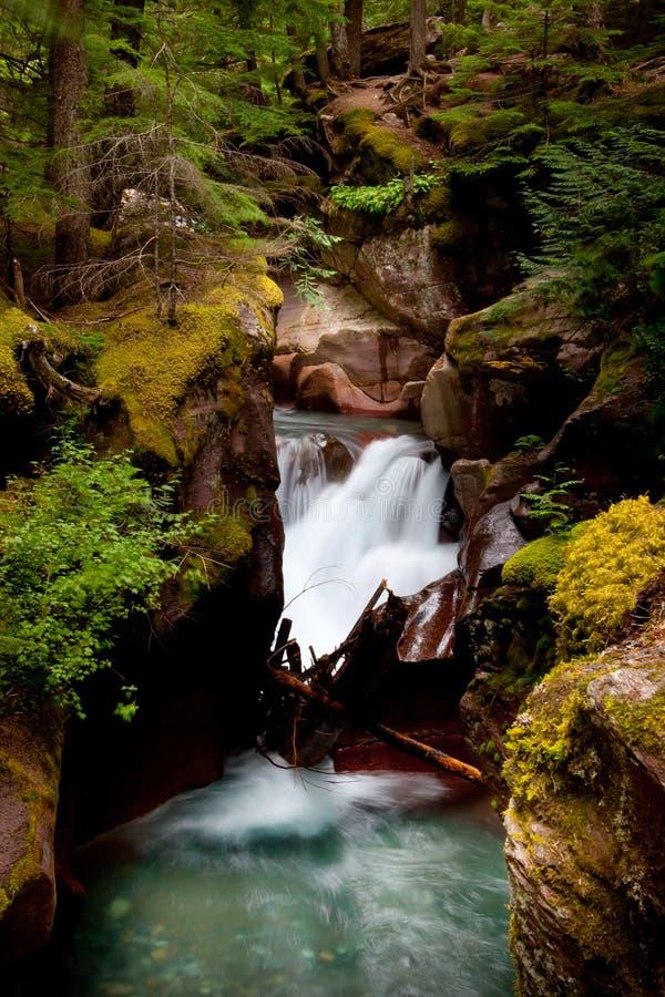 ύδωρ της Μοντάνα στοκ εικόνες με δικαίωμα ελεύθερης χρήσης