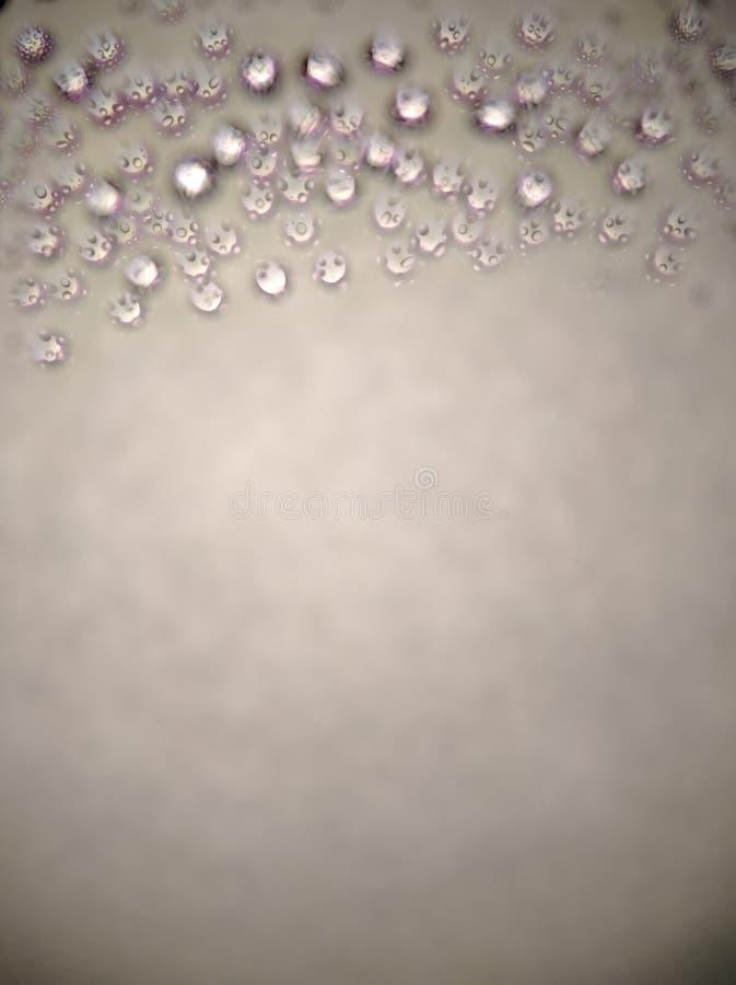 ύδωρ σταγονίδιων στοκ εικόνες