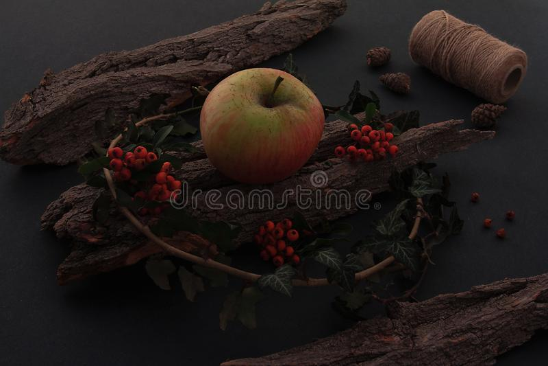 Ώριμα νόστιμα μήλα στον ξύλινο πίνακα στοκ φωτογραφία με δικαίωμα ελεύθερης χρήσης